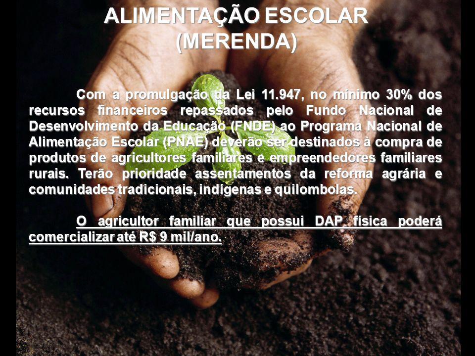 ALIMENTAÇÃO ESCOLAR (MERENDA) Com a promulgação da Lei 11.947, no mínimo 30% dos recursos financeiros repassados pelo Fundo Nacional de Desenvolviment