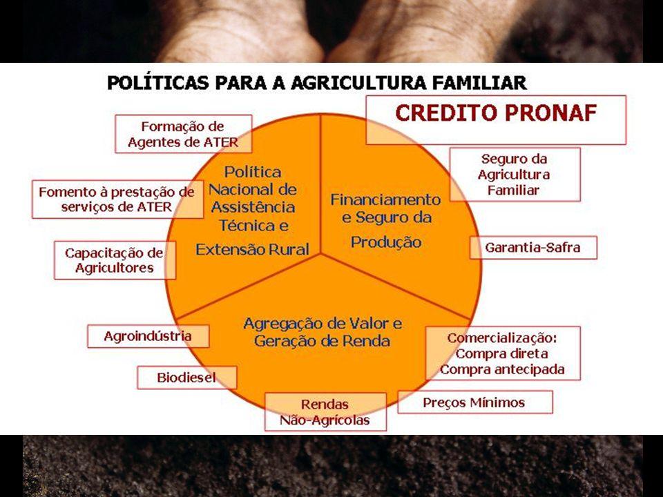 AÇÕES DO PRONAF Crédito rural com juros subsidiados Crédito rural com juros subsidiados Seguro da Agricultura Familiar (SEAF) Seguro da Agricultura Familiar (SEAF) Programa de Garantia de Preços da Agricultura Familiar (PGPAF) Programa de Garantia de Preços da Agricultura Familiar (PGPAF) Garantia Safra (apenas para o Nordeste, norte de Minas Gerais e estado do Espírito Santo) Garantia Safra (apenas para o Nordeste, norte de Minas Gerais e estado do Espírito Santo)