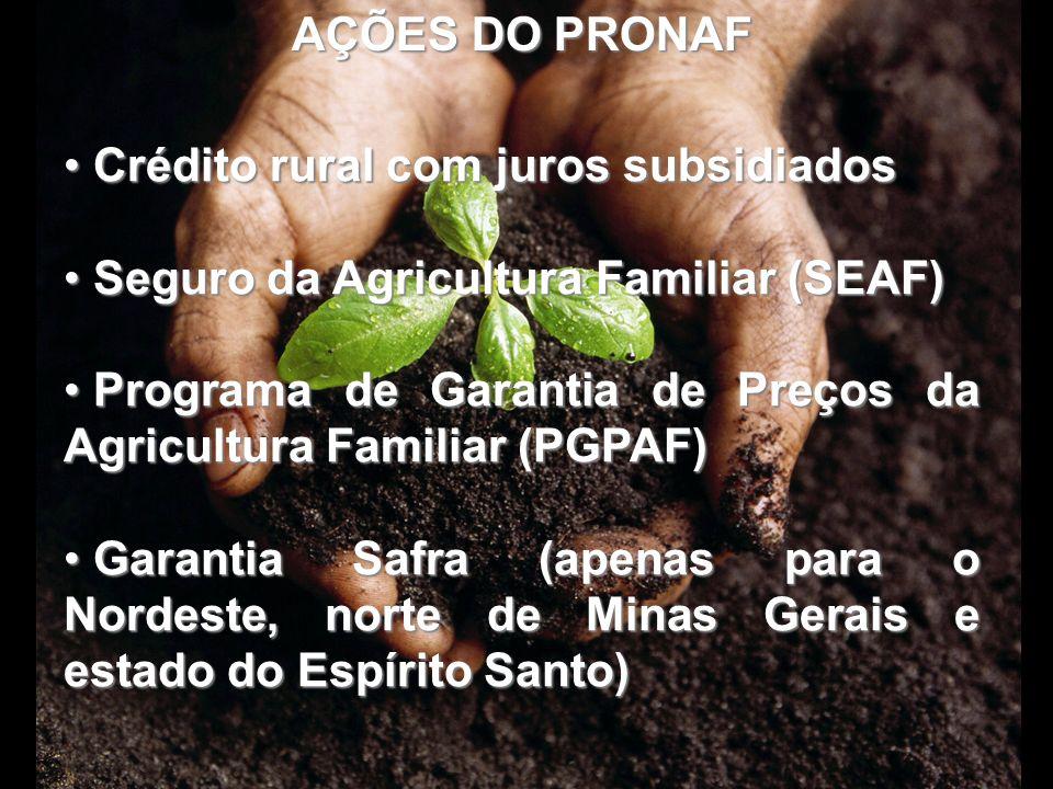 AÇÕES DO PRONAF Crédito rural com juros subsidiados Crédito rural com juros subsidiados Seguro da Agricultura Familiar (SEAF) Seguro da Agricultura Fa
