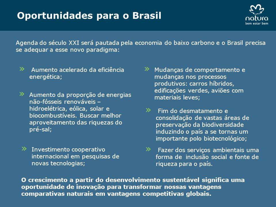 Oportunidades para o Brasil Agenda do século XXI será pautada pela economia do baixo carbono e o Brasil precisa se adequar a esse novo paradigma: » Au