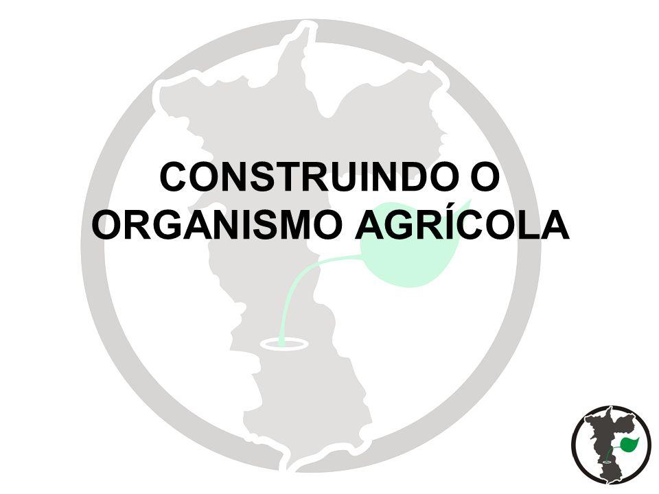 2 CONSTRUINDO O ORGANISMO AGRÍCOLA