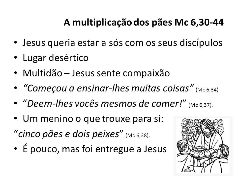 Jesus queria estar a sós com os seus discípulos Lugar desértico Multidão – Jesus sente compaixão Começou a ensinar-lhes muitas coisas (Mc 6,34) Deem-l
