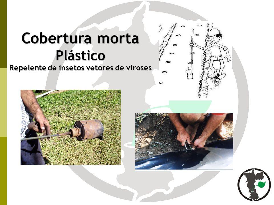 Plástico Repelente de insetos vetores de viroses