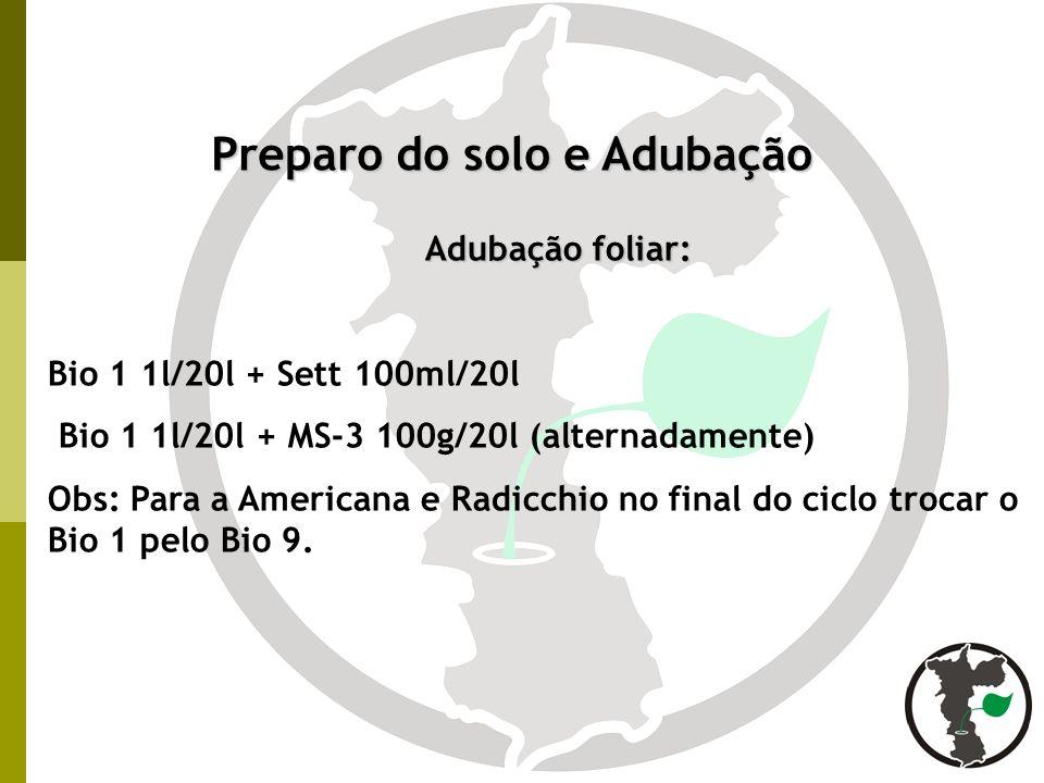 Preparo do solo e Adubação Adubação foliar: Bio 1 1l/20l + Sett 100ml/20l Bio 1 1l/20l + MS-3 100g/20l (alternadamente) Obs: Para a Americana e Radicc