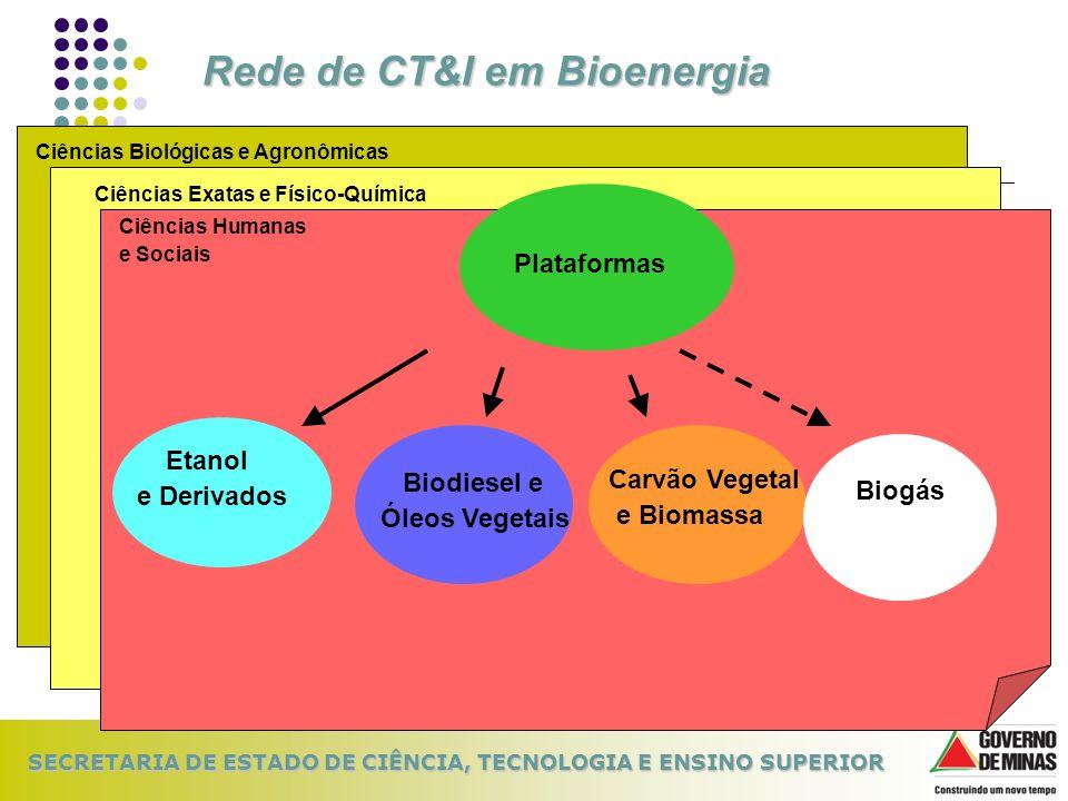 SECRETARIA DE ESTADO DE CIÊNCIA, TECNOLOGIA E ENSINO SUPERIOR Rede de CT&I em Bioenergia Ciências Biológicas e AgronômicasCiências Exatas e Físico-Quí