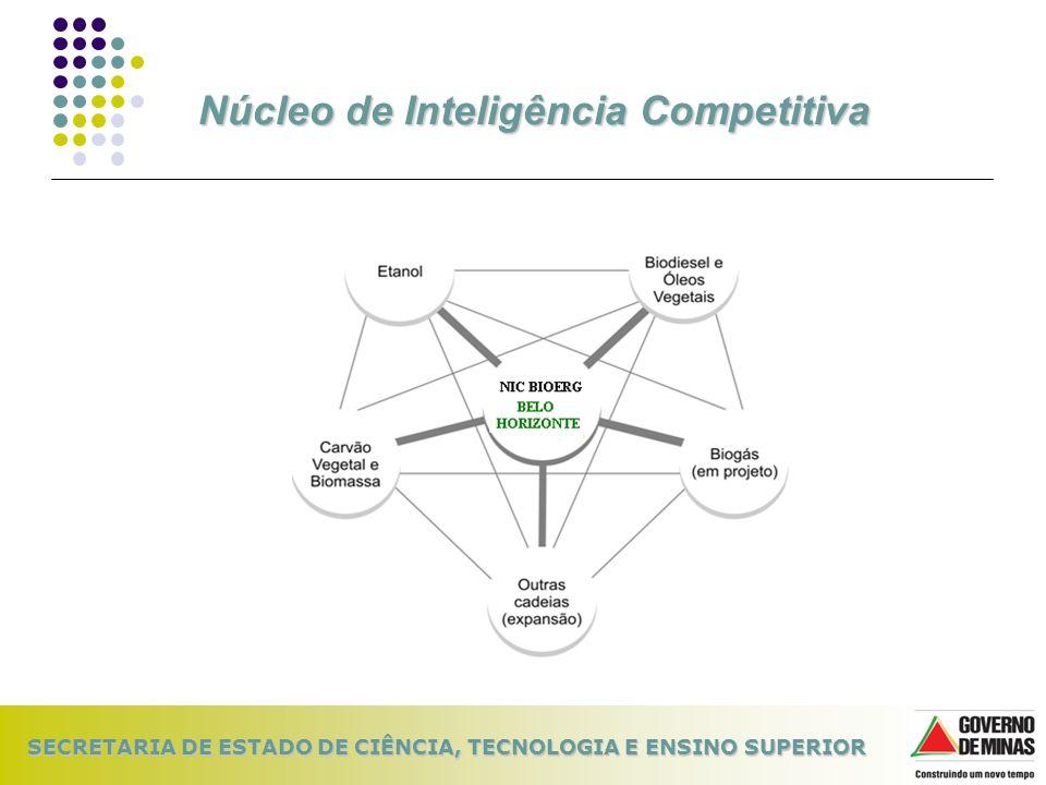 SECRETARIA DE ESTADO DE CIÊNCIA, TECNOLOGIA E ENSINO SUPERIOR Núcleo de Inteligência Competitiva