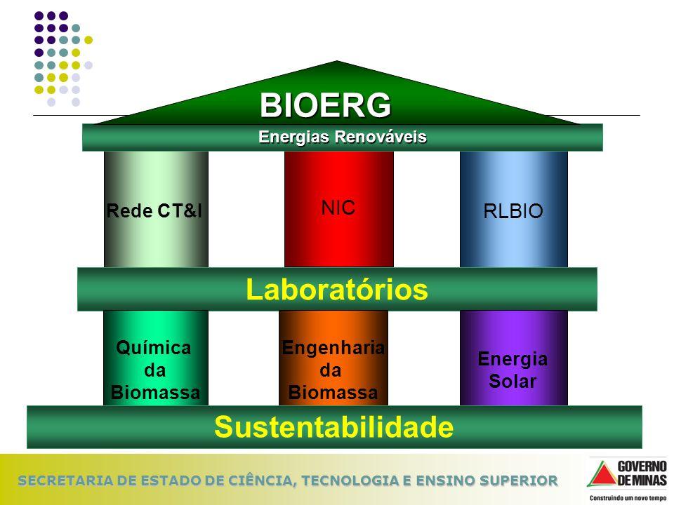 SECRETARIA DE ESTADO DE CIÊNCIA, TECNOLOGIA E ENSINO SUPERIOR Rede CT&I NIC RLBIO Laboratórios Química da Biomassa Engenharia da Biomassa Energia Sola