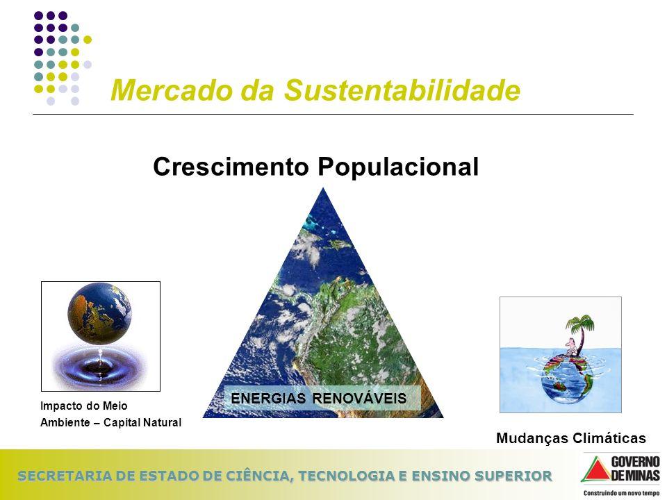 SECRETARIA DE ESTADO DE CIÊNCIA, TECNOLOGIA E ENSINO SUPERIOR Mercado da Sustentabilidade Impacto do Meio Ambiente – Capital Natural Mudanças Climátic