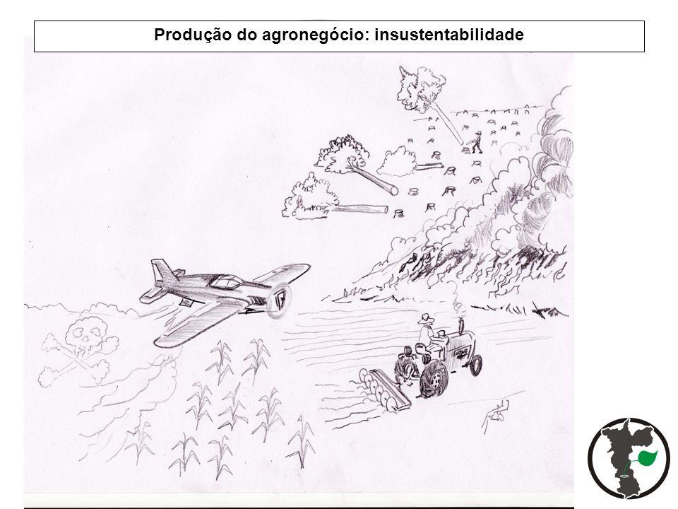 Produção do agronegócio: insustentabilidade