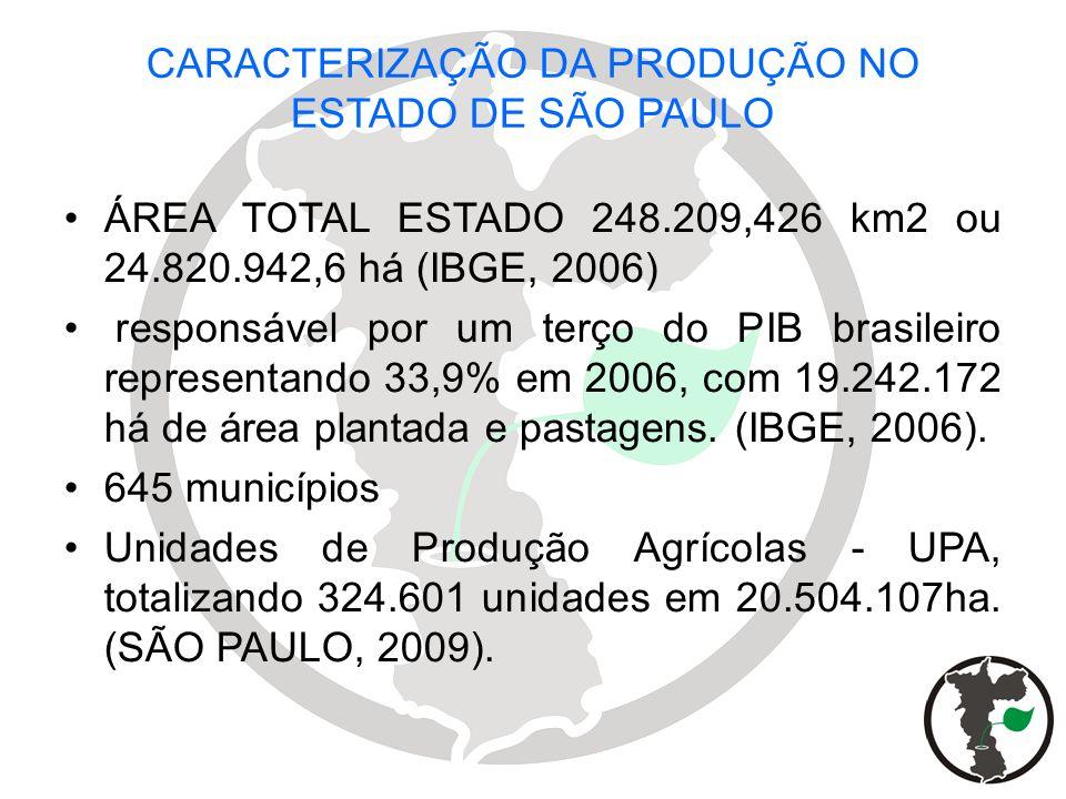 CARACTERIZAÇÃO DA PRODUÇÃO NO ESTADO DE SÃO PAULO ÁREA TOTAL ESTADO 248.209,426 km2 ou 24.820.942,6 há (IBGE, 2006) responsável por um terço do PIB br