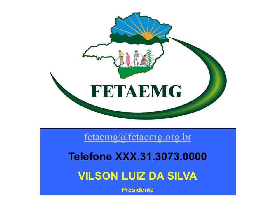 fetaemg@fetaemg.org.br Telefone XXX.31.3073.0000 VILSON LUIZ DA SILVA Presidente