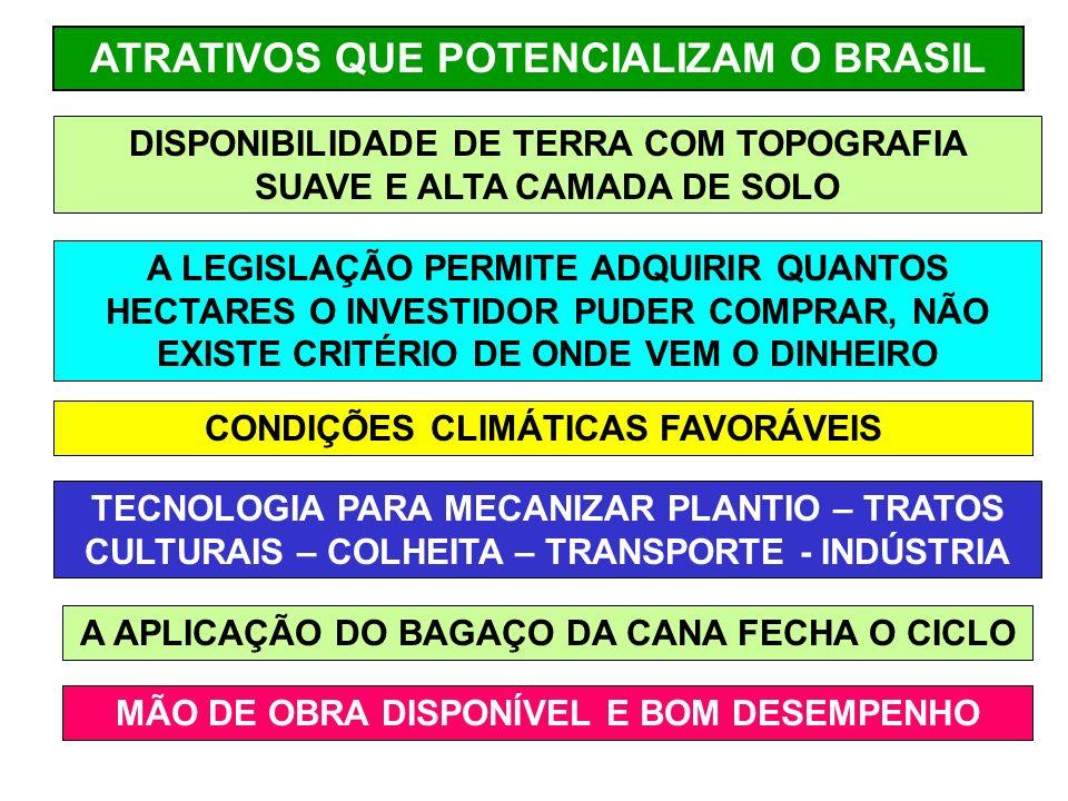 ATRATIVOS QUE POTENCIALIZAM O BRASIL DISPONIBILIDADE DE TERRA COM TOPOGRAFIA SUAVE E ALTA CAMADA DE SOLO A LEGISLAÇÃO PERMITE ADQUIRIR QUANTOS HECTARES O INVESTIDOR PUDER COMPRAR, NÃO EXISTE CRITÉRIO DE ONDE VEM O DINHEIRO CONDIÇÕES CLIMÁTICAS FAVORÁVEIS TECNOLOGIA PARA MECANIZAR PLANTIO – TRATOS CULTURAIS – COLHEITA – TRANSPORTE - INDÚSTRIA A APLICAÇÃO DO BAGAÇO DA CANA FECHA O CICLO MÃO DE OBRA DISPONÍVEL E BOM DESEMPENHO
