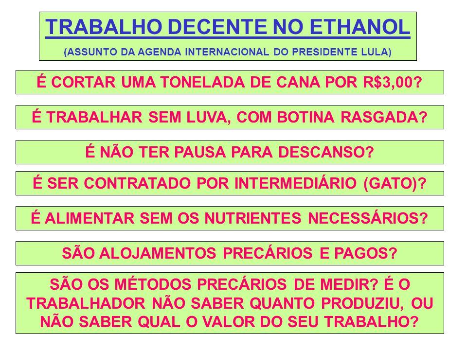 TRABALHO DECENTE NO ETHANOL (ASSUNTO DA AGENDA INTERNACIONAL DO PRESIDENTE LULA) É CORTAR UMA TONELADA DE CANA POR R$3,00.
