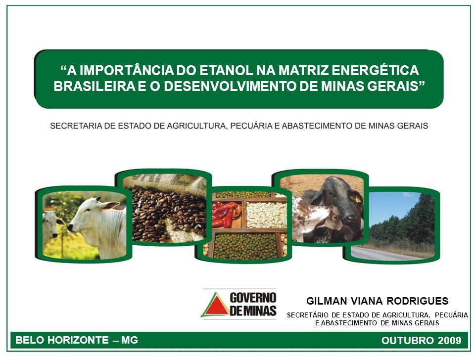 1 BELO HORIZONTE – MG OUTUBRO 2009 A IMPORTÂNCIA DO ETANOL NA MATRIZ ENERGÉTICA BRASILEIRA E O DESENVOLVIMENTO DE MINAS GERAIS GILMAN VIANA RODRIGUES