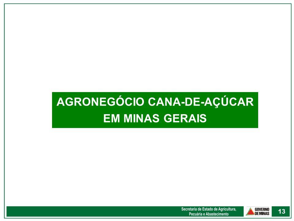 AGRONEGÓCIO CANA-DE-AÇÚCAR EM MINAS GERAIS 13