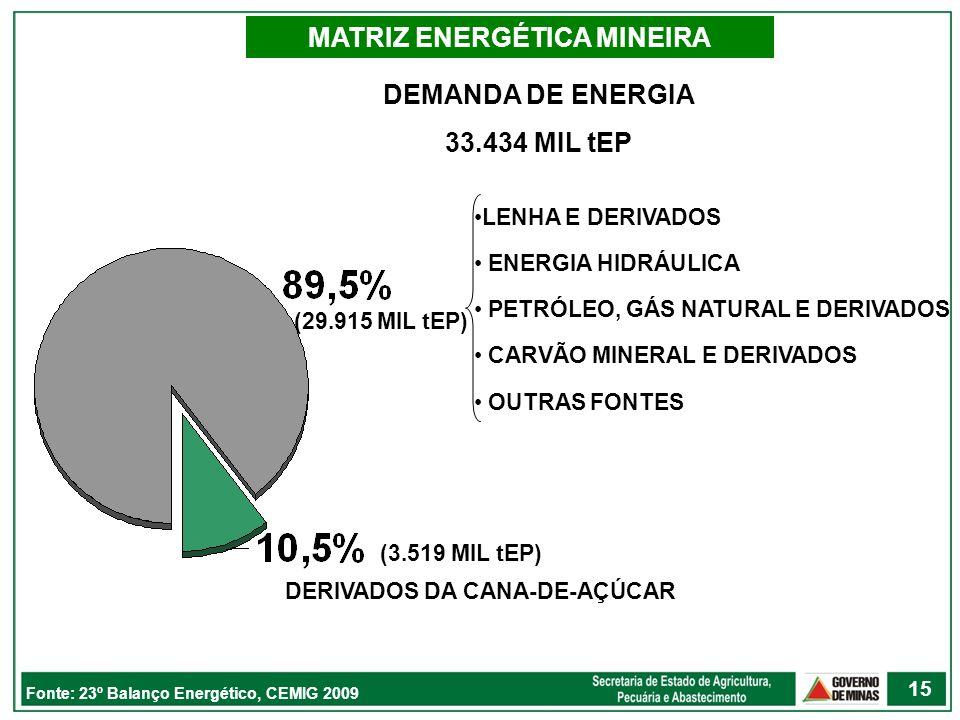 DERIVADOS DA CANA-DE-AÇÚCAR DEMANDA DE ENERGIA 33.434 MIL tEP MATRIZ ENERGÉTICA MINEIRA Fonte: 23º Balanço Energético, CEMIG 2009 LENHA E DERIVADOS EN