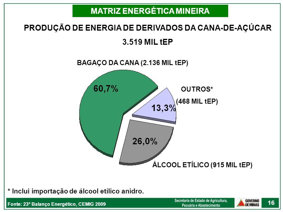 PRODUÇÃO DE ENERGIA DE DERIVADOS DA CANA-DE-AÇÚCAR 3.519 MIL tEP MATRIZ ENERGÉTICA MINEIRA Fonte: 23º Balanço Energético, CEMIG 2009 BAGAÇO DA CANA (2