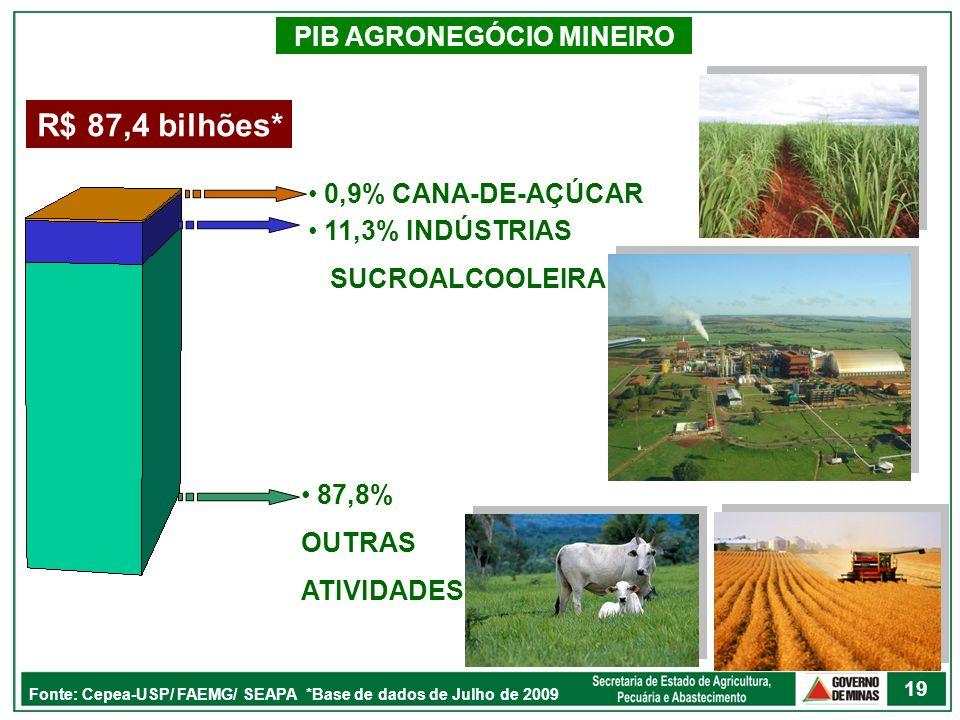 PIB AGRONEGÓCIO MINEIRO R$ 87,4 bilhões* 19 Fonte: Cepea-USP/ FAEMG/ SEAPA *Base de dados de Julho de 2009 87,8% OUTRAS ATIVIDADES 11,3% INDÚSTRIAS SU