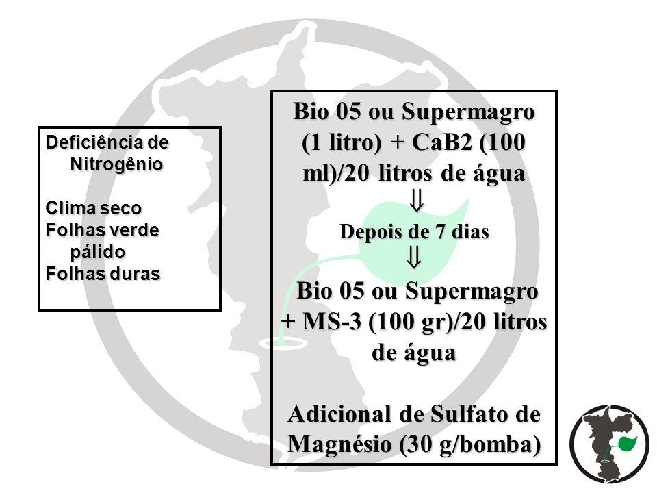 Deficiência de Nitrogênio Clima seco Folhas verde pálido Folhas duras Bio 05 ou Supermagro (1 litro) + CaB2 (100 ml)/20 litros de água Depois de 7 dia