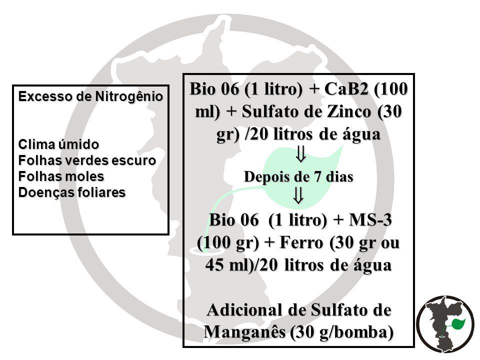 Excesso de Nitrogênio Clima úmido Folhas verdes escuro Folhas moles Doenças foliares Bio 06 (1 litro) + CaB2 (100 ml) + Sulfato de Zinco (30 gr) /20 l