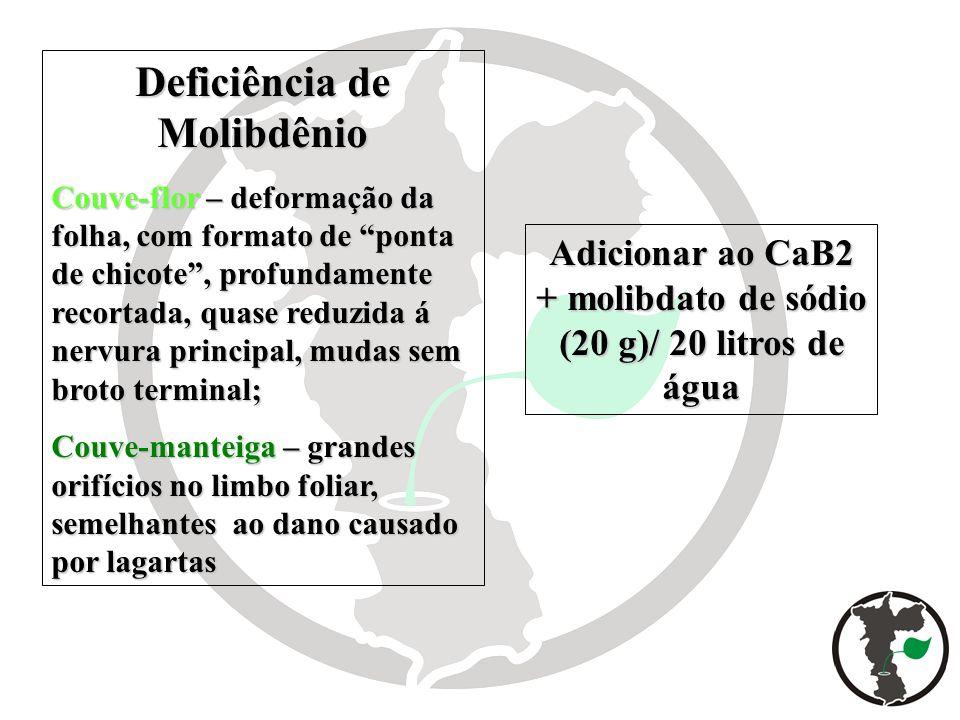 Deficiência de Molibdênio Couve-flor – deformação da folha, com formato de ponta de chicote, profundamente recortada, quase reduzida á nervura princip