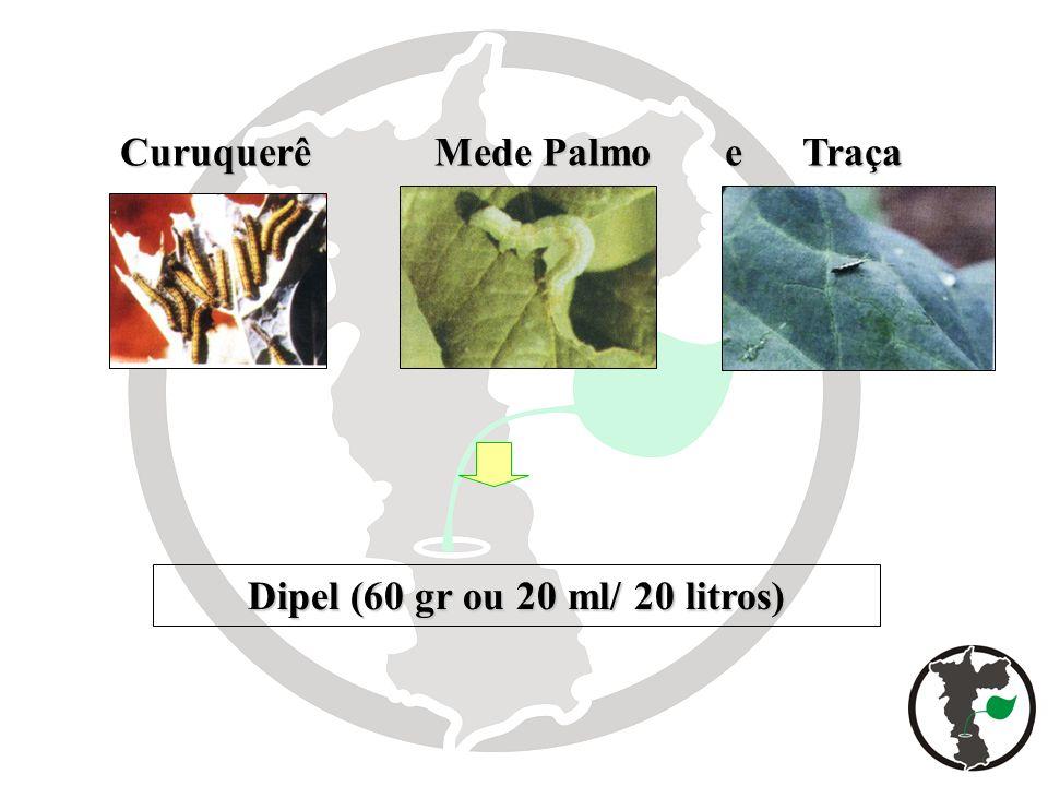 Dipel (60 gr ou 20 ml/ 20 litros) Curuquerê Mede Palmo e Traça