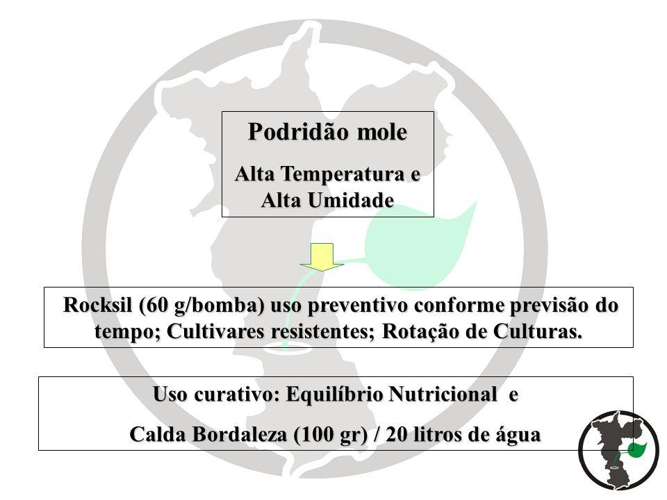 Uso curativo: Equilíbrio Nutricional e Calda Bordaleza (100 gr) / 20 litros de água Rocksil (60 g/bomba) uso preventivo conforme previsão do tempo; Cu