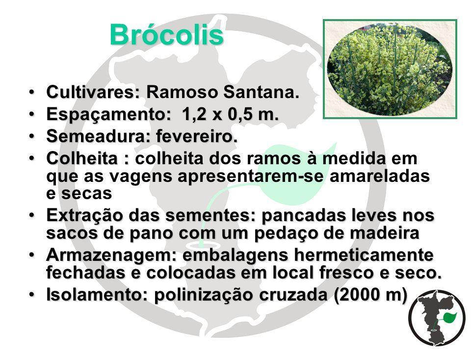 Brócolis Cultivares:Cultivares: Ramoso Santana. Espaçamento: 1,2 x 0,5 m.Espaçamento: 1,2 x 0,5 m. Semeadura: fevereiro.Semeadura: fevereiro. Colheita