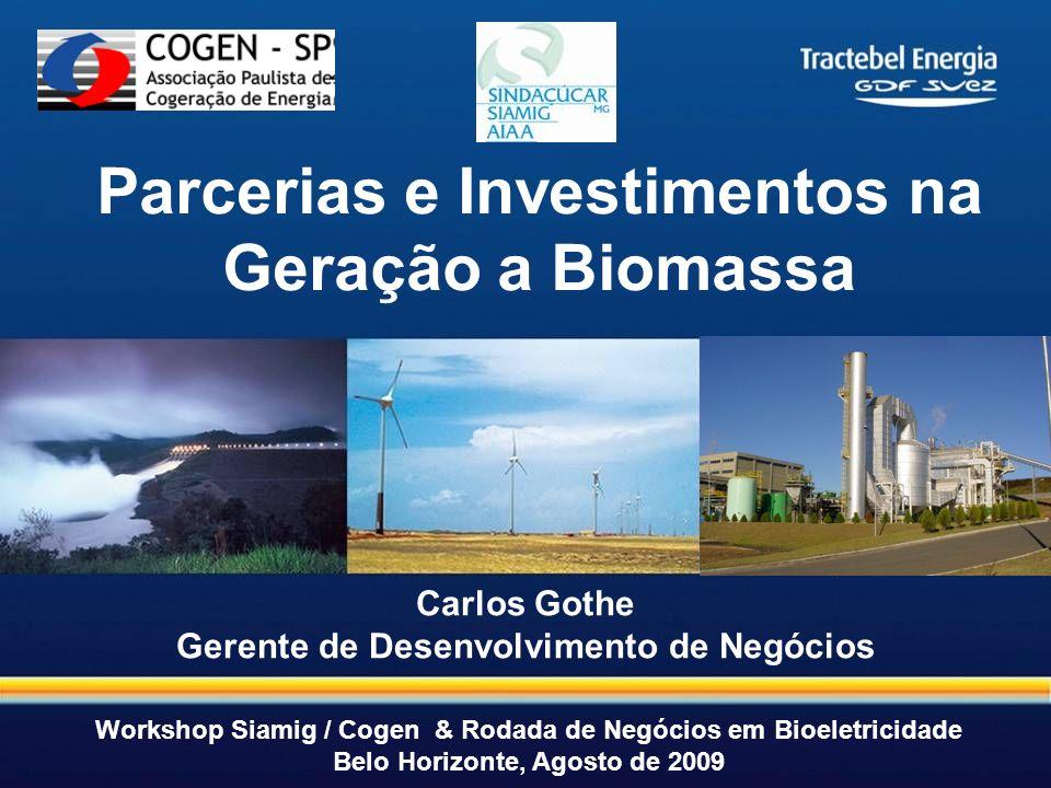 1 1 Carlos Gothe Gerente de Desenvolvimento de Negócios Parcerias e Investimentos na Geração a Biomassa Workshop Siamig / Cogen & Rodada de Negócios e