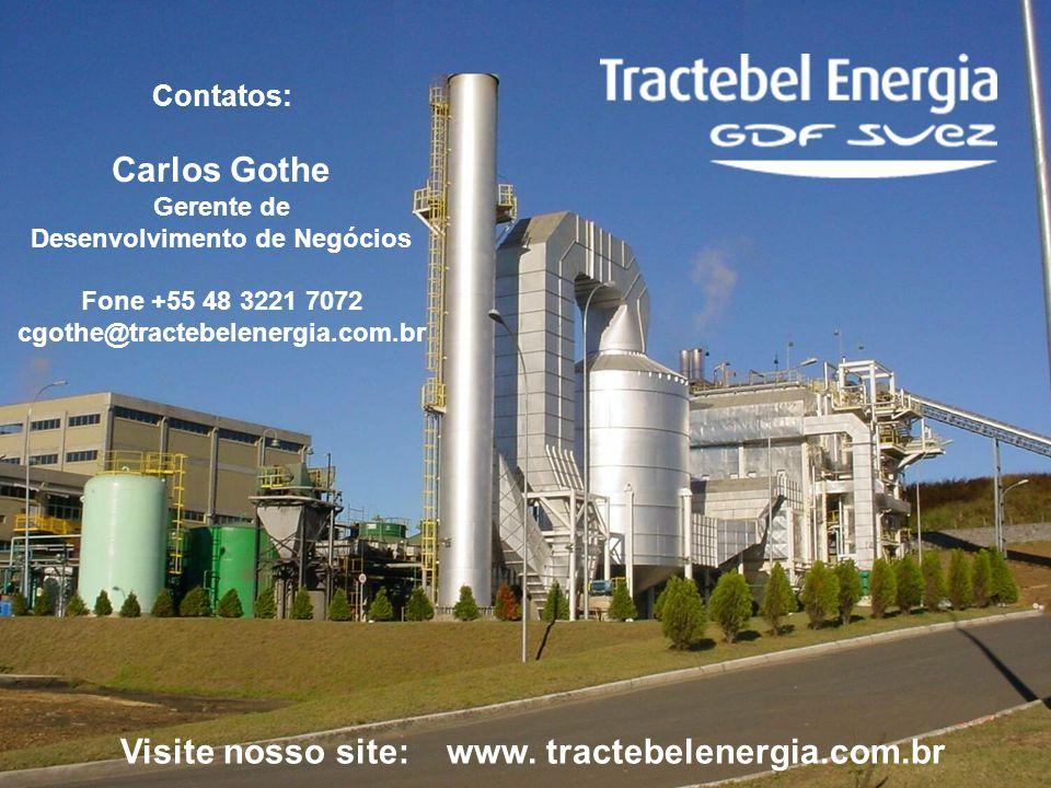 16 Contatos: Carlos Gothe Gerente de Desenvolvimento de Negócios Fone +55 48 3221 7072 cgothe@tractebelenergia.com.br Visite nosso site: www. tractebe