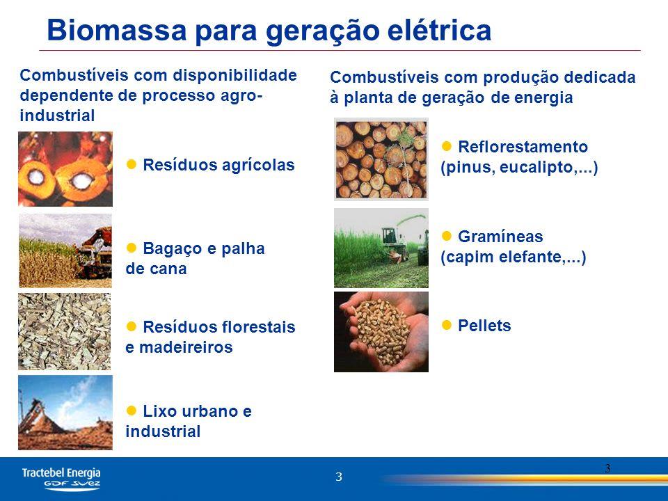 3 3 Biomassa para geração elétrica Bagaço e palha de cana Resíduos agrícolas Combustíveis com disponibilidade dependente de processo agro- industrial Lixo urbano e industrial Resíduos florestais e madeireiros Gramíneas (capim elefante,...) Reflorestamento (pinus, eucalipto,...) Combustíveis com produção dedicada à planta de geração de energia Pellets