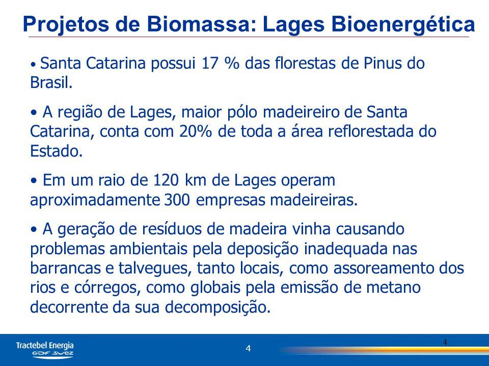 4 4 Santa Catarina possui 17 % das florestas de Pinus do Brasil. A região de Lages, maior pólo madeireiro de Santa Catarina, conta com 20% de toda a á