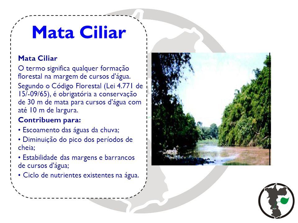 Mata Ciliar O termo significa qualquer formação florestal na margem de cursos dágua. Segundo o Código Florestal (Lei 4.771 de 15/-09/65), é obrigatóri