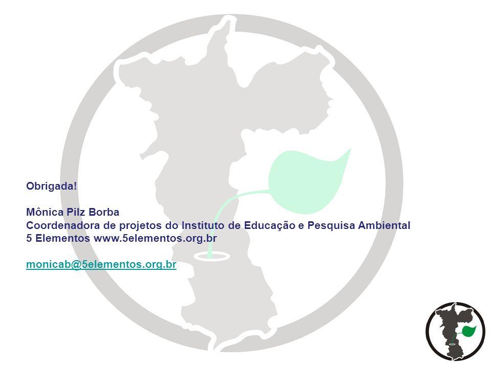 Obrigada! Mônica Pilz Borba Coordenadora de projetos do Instituto de Educação e Pesquisa Ambiental 5 Elementos www.5elementos.org.br monicab@5elemento