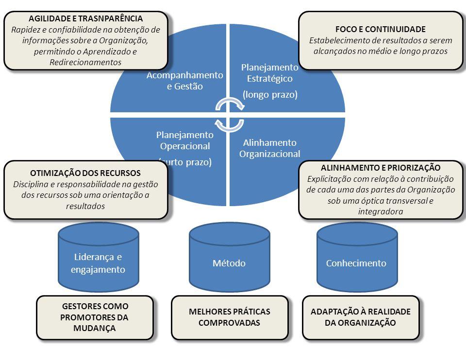 Acompanhament o e Gestão Planejamento Estratégico (longo prazo) Alinhamento Organizacional Planejamento Operacional (curto prazo) Liderança e engajame
