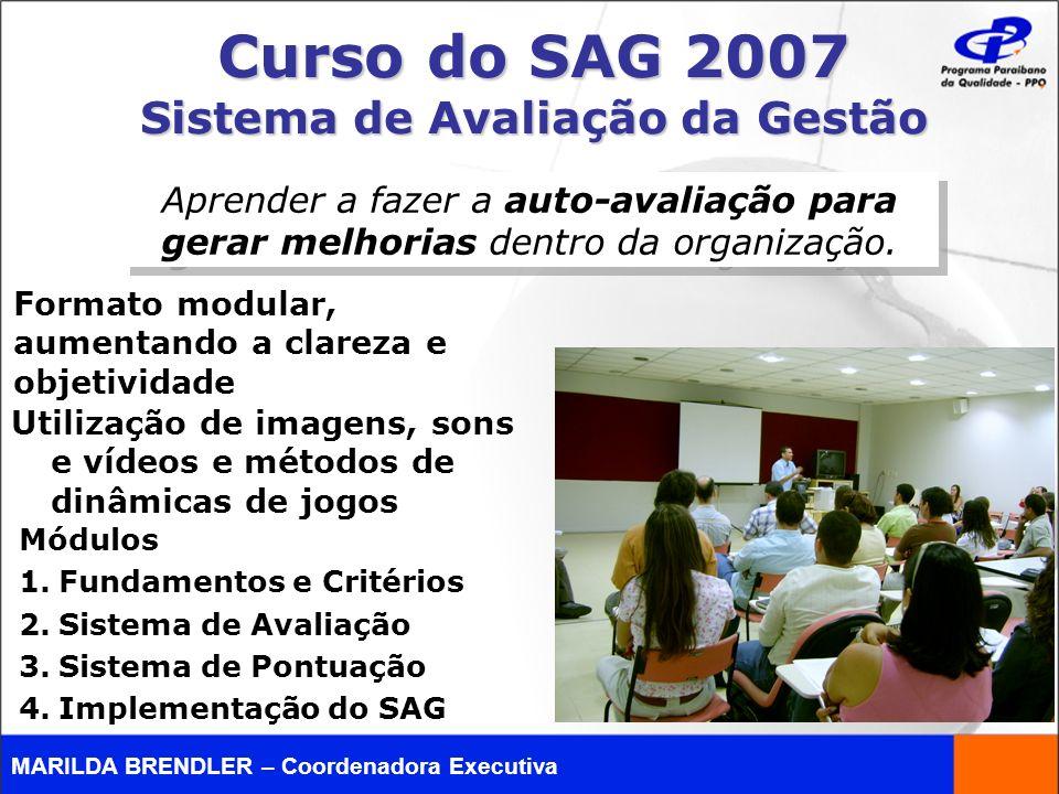 Curso do SAG 2007 Sistema de Avaliação da Gestão Aprender a fazer a auto-avaliação para gerar melhorias dentro da organização. Utilização de imagens,