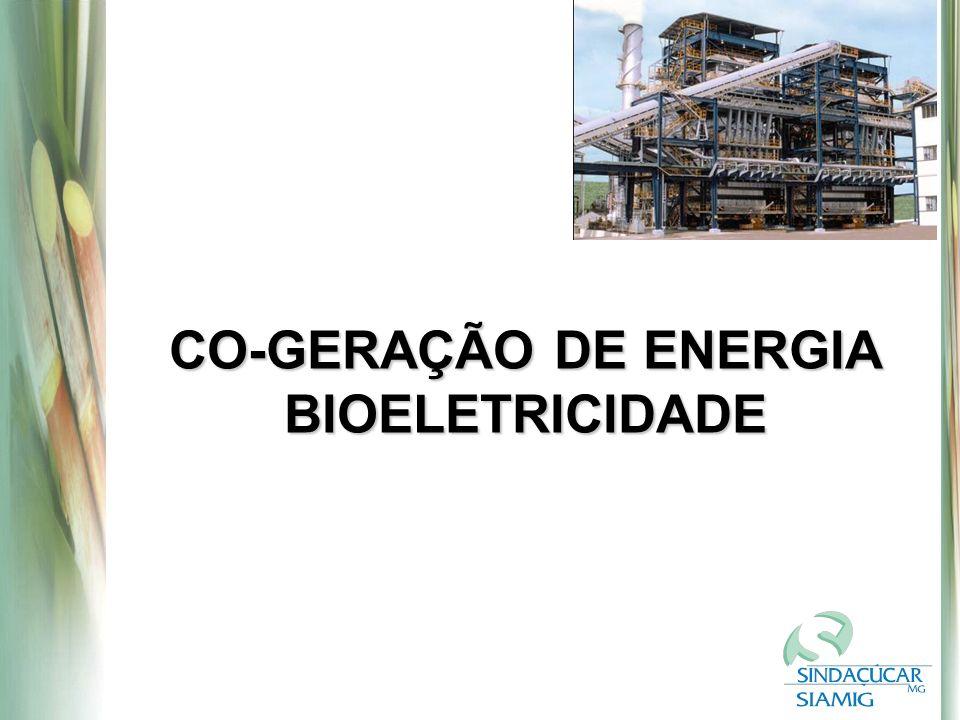 CO-GERAÇÃO DE ENERGIA BIOELETRICIDADE