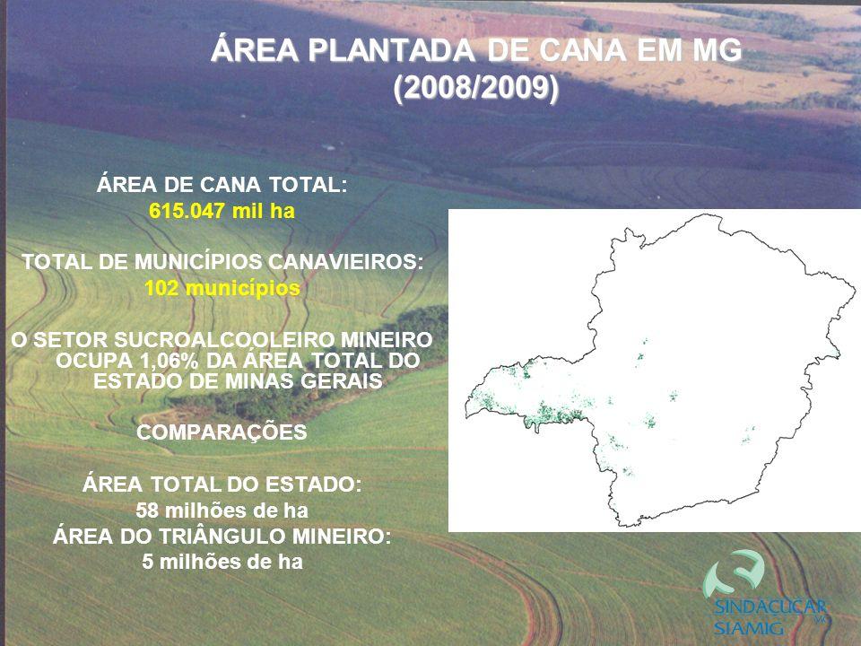 ÁREA PLANTADA DE CANA EM MG (2008/2009) ÁREA DE CANA TOTAL: 615.047 mil ha TOTAL DE MUNICÍPIOS CANAVIEIROS: 102 municípios O SETOR SUCROALCOOLEIRO MINEIRO OCUPA 1,06% DA ÁREA TOTAL DO ESTADO DE MINAS GERAIS COMPARAÇÕES ÁREA TOTAL DO ESTADO: 58 milhões de ha ÁREA DO TRIÂNGULO MINEIRO: 5 milhões de ha