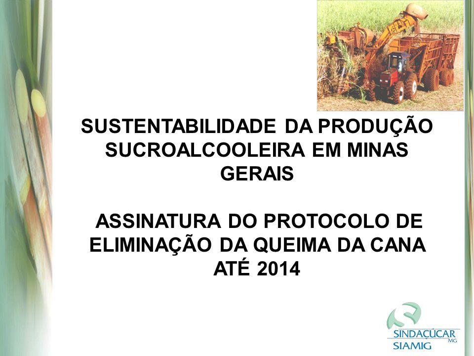 SUSTENTABILIDADE DA PRODUÇÃO SUCROALCOOLEIRA EM MINAS GERAIS ASSINATURA DO PROTOCOLO DE ELIMINAÇÃO DA QUEIMA DA CANA ATÉ 2014