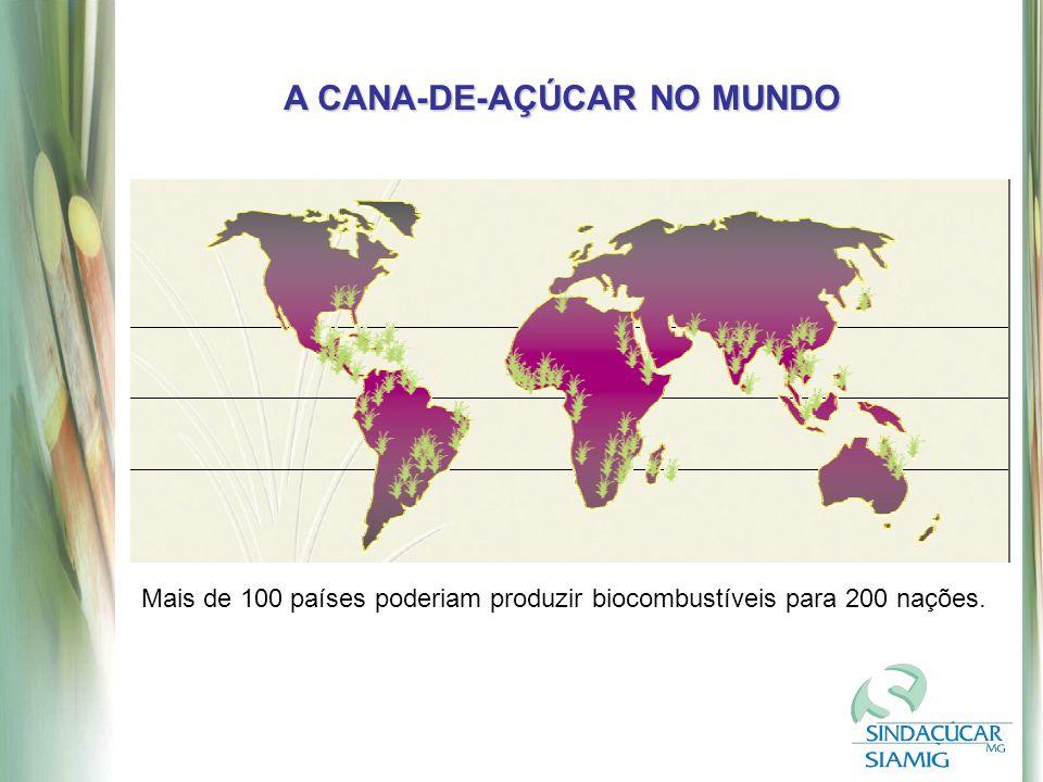 A CANA-DE-AÇÚCAR NO MUNDO Mais de 100 países poderiam produzir biocombustíveis para 200 nações.