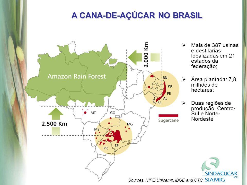 Sources: NIPE-Unicamp, IBGE and CTC A CANA-DE-AÇÚCAR NO BRASIL Mais de 387 usinas e destilarias localizadas em 21 estados da federação; Área plantada: 7,8 milhões de hectares; Duas regiões de produção: Centro- Sul e Norte- Nordeste