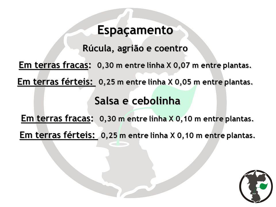 Espaçamento Rúcula, agrião e coentro Em terras fracas: 0,30 m entre linha X 0,07 m entre plantas. Em terras férteis: 0,25 m entre linha X 0,05 m entre