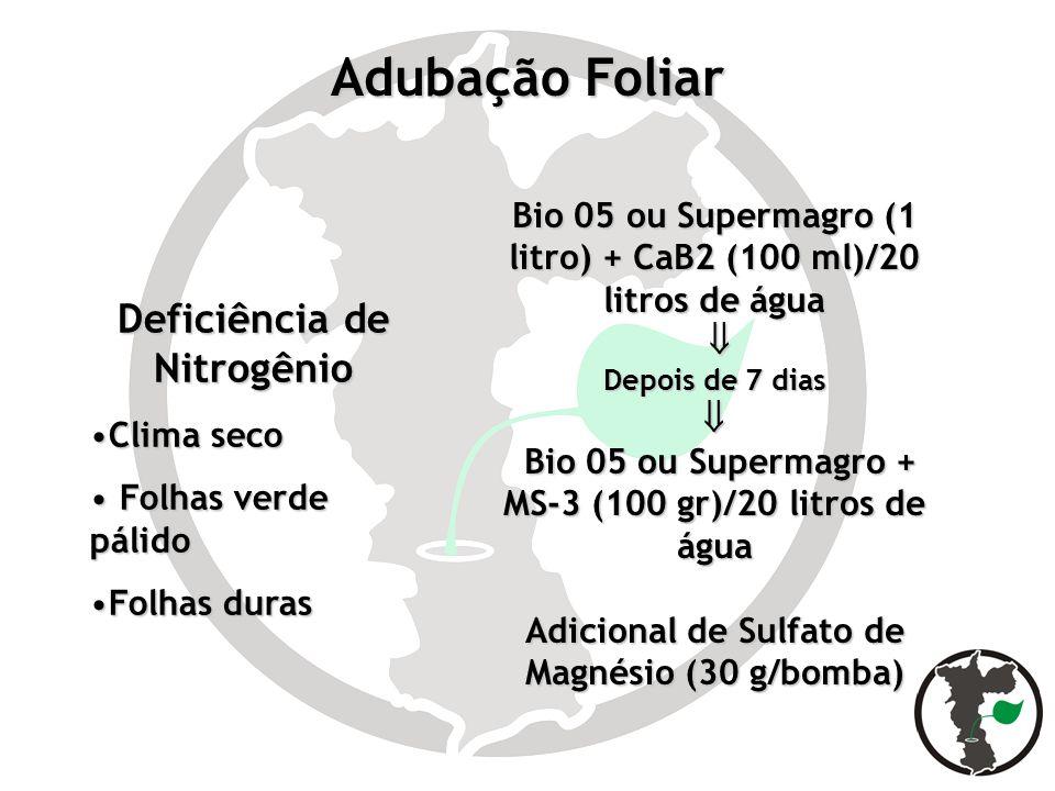 Adubação Foliar Bio 05 ou Supermagro (1 litro) + CaB2 (100 ml)/20 litros de água Depois de 7 dias Bio 05 ou Supermagro + MS-3 (100 gr)/20 litros de ág