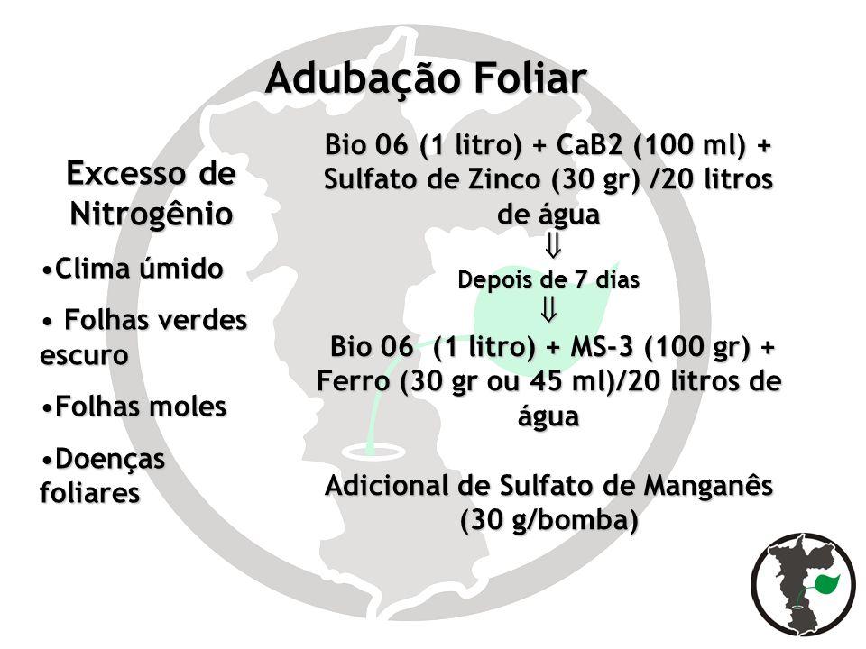 Adubação Foliar Bio 06 (1 litro) + CaB2 (100 ml) + Sulfato de Zinco (30 gr) /20 litros de água Depois de 7 dias Bio 06 (1 litro) + MS-3 (100 gr) + Fer
