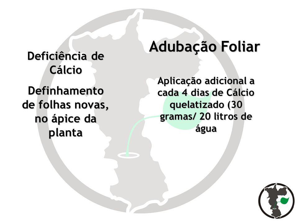 Adubação Foliar Adubação Foliar Deficiência de Cálcio Definhamento de folhas novas, no ápice da planta Aplicação adicional a cada 4 dias de Cálcio que