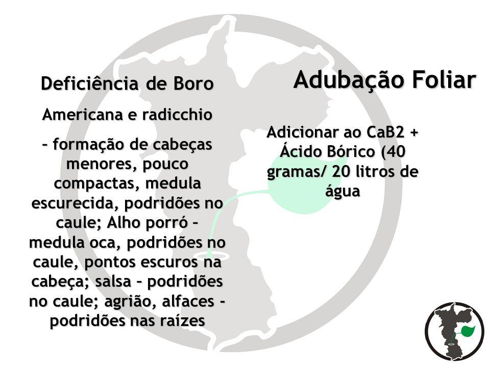 Adubação Foliar Adubação Foliar Deficiência de Boro Americana e radicchio – formação de cabeças menores, pouco compactas, medula escurecida, podridões