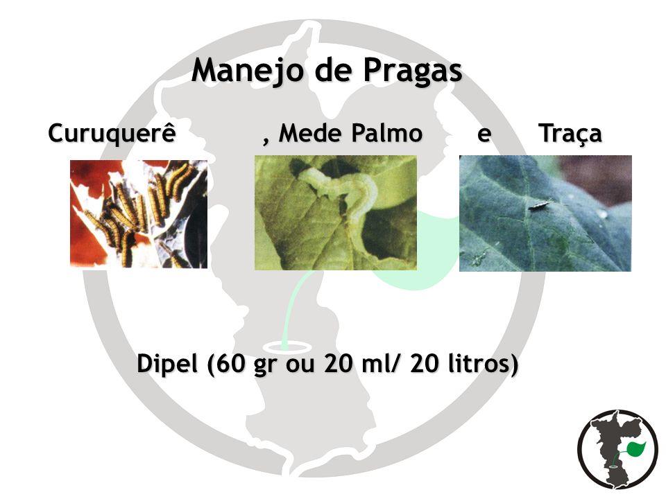 Manejo de Pragas Dipel (60 gr ou 20 ml/ 20 litros) Curuquerê, Mede Palmo e Traça