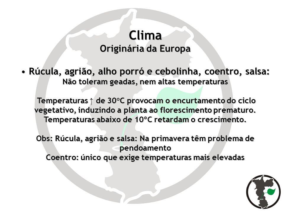 Clima Originária da Europa Rúcula, agrião, alho porró e cebolinha, coentro, salsa: Não toleram geadas, nem altas temperaturas Rúcula, agrião, alho por