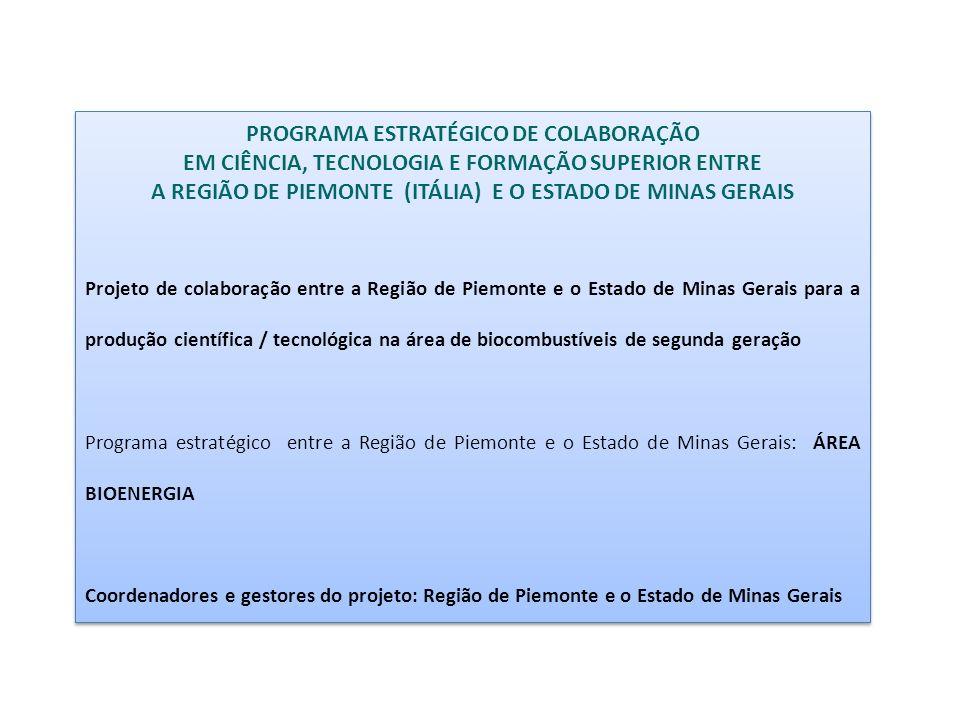 PROGRAMA ESTRATÉGICO DE COLABORAÇÃO EM CIÊNCIA, TECNOLOGIA E FORMAÇÃO SUPERIOR ENTRE A REGIÃO DE PIEMONTE (ITÁLIA) E O ESTADO DE MINAS GERAIS Projeto