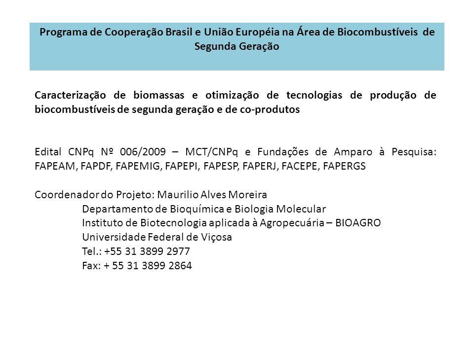 Caracterização de biomassas e otimização de tecnologias de produção de biocombustíveis de segunda geração e de co-produtos Edital CNPq Nº 006/2009 – M